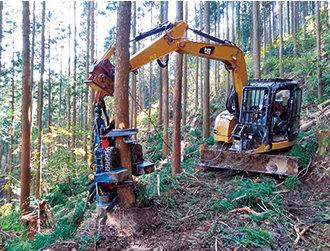 ハーベスタによる立木の伐採