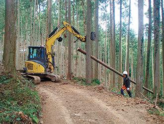 伐倒木の集材