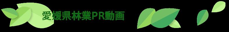 愛媛県林業PR動画