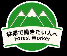 林業で働きたい人へ